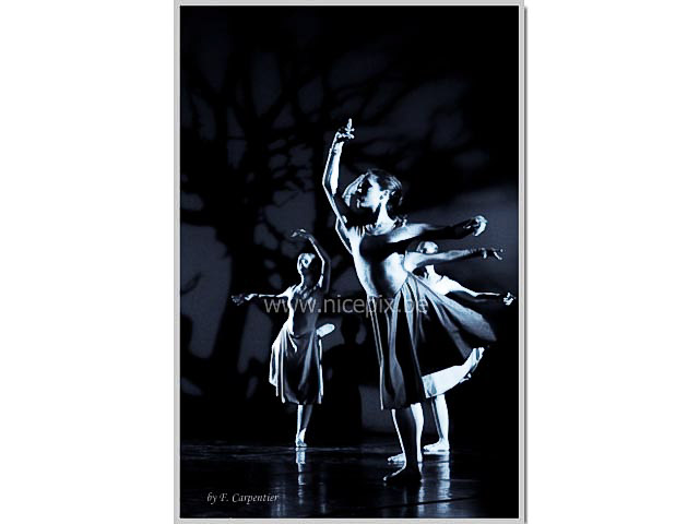 NicepixEvents 02